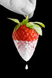 Strawberry dipped in cream. A hand dipping a strawberry in cream on black Royalty Free Stock Photos