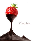 Strawberry dipped in melting dark chocolate Royalty Free Stock Image