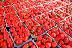 Strawberry display Royalty Free Stock Images