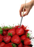 Strawberry drawing Stock Images
