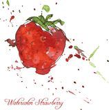 Strawberry drawing by watercolor Stock Photo