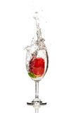 Strawberry Drop In a Glass of Water Isolated Background Royalty Free Stock Photography