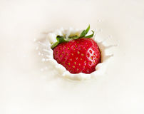 Strawberry dropping into milk. Royalty Free Stock Photo
