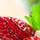 Strawberry with drops of melted chocolate - Close up - Square composition Stock Image