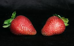 Strawberry duet 2 Stock Photos