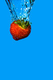 Strawberry Dunk Royalty Free Stock Images