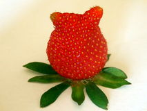 Strawberry with ears. Misshapen strawberry looking like it has a pair of ears Stock Image