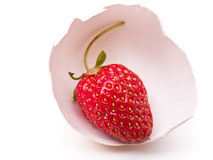 Strawberry in Egg Shell Royalty Free Stock Photography