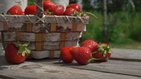 Strawberry fall on a wooden table stock video footage