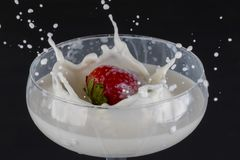 Strawberry falling into a glass filled with milk royalty free stock image