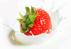Strawberry falling into milk Stock Image