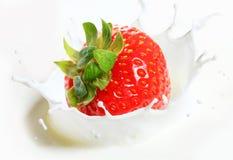 Strawberry falling into milk. With splashes Stock Image