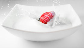 Strawberry falling in milk with splashes. Red and white. Royalty Free Stock Images