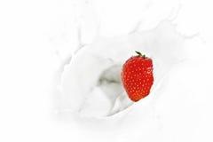 Strawberry falling into the milky splash Royalty Free Stock Photos