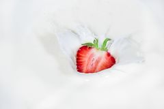 Strawberry falling into splashing milk.  Isolated on white. Stock Images