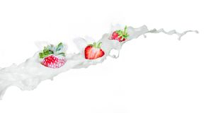 Strawberry falling into splashing milk.  Isolated on white. Stock Photography