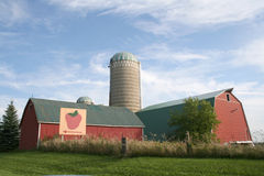 Strawberry farm. In Ontario, Toronto Stock Photography