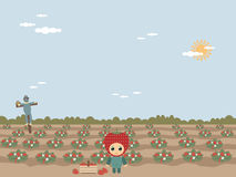 Strawberry field. A landscape background with strawberry field and small child in a strawberry costume Royalty Free Stock Image