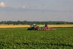 Free Strawberry Fields Stock Photo - 88498090