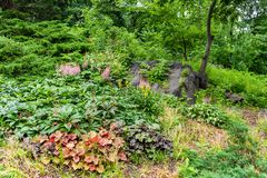 Strawberry Fields garden in Central Park, NYC. Strawberry Fields garden in Central Park, New York City stock photography