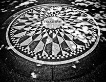 Strawberry Fields Stock Images