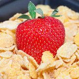 Strawberry and flakes Stock Image