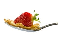 Strawberry Flakes Royalty Free Stock Image