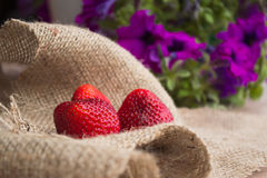 Strawberry. With flower on a napkin stock photos