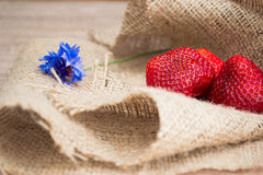 Strawberry. With flower on a napkin royalty free stock photo