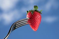 Strawberry on fork Stock Images