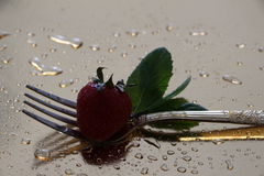 Strawberry and fork Stock Photography