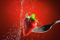 Strawberry on a fork punctured falling sugar detail. Strawberry on a fork punctured falling sugar with red background detail royalty free stock photography