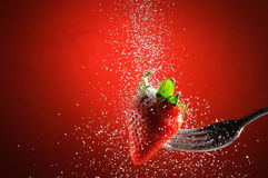 Strawberry on a fork punctured falling sugar. With red background stock photo