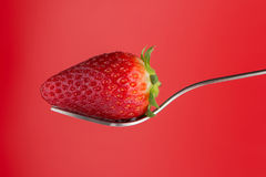 Strawberry on a fork. On red background Stock Photo