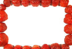 Strawberry frame. Red strawberies forming a frame on white Stock Image