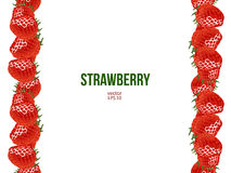 Strawberry frame, vector illustration Stock Images