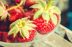 Strawberry. Fresh berries of strawberry/ Selective focus. Strawberry in to glass bowl. Strawberry. Fresh berries of strawberry/Selective focus. Strawberry in to stock photos