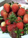 The strawberry fresh Stock Photography