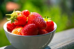 Strawberry. Fresh Red Strawberries at the white bowl Stock Photo