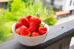 Strawberry. Fresh Red Strawberries at the white bowl Royalty Free Stock Images