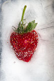 Strawberry frozen in ice Royalty Free Stock Images