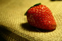 Strawberry fruit. Strawberry stock photos