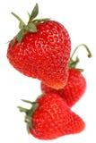 Strawberry fruit. Strawberry fresh fruit isolated on white background royalty free stock photo