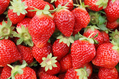 Strawberry fruit background royalty free stock image