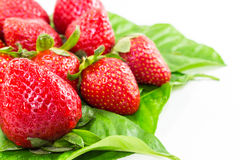 Strawberry Fruit Stock Photos