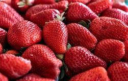 Strawberry fruit close up. Fresh Strawberry fruit close up stock photo