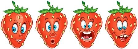 Strawberry. Fruit Food concept royalty free stock photos