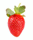 Strawberry fruit Stock Image