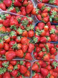 Strawberry fruit at a greengrocery Stock Images
