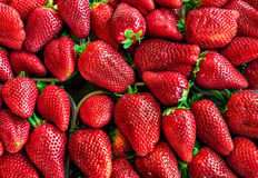 Strawberry fruit group close up. Fresh strawberry colorful group. top view royalty free stock image
